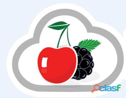 Restaurant Call Center & Solution   cherryberryrms