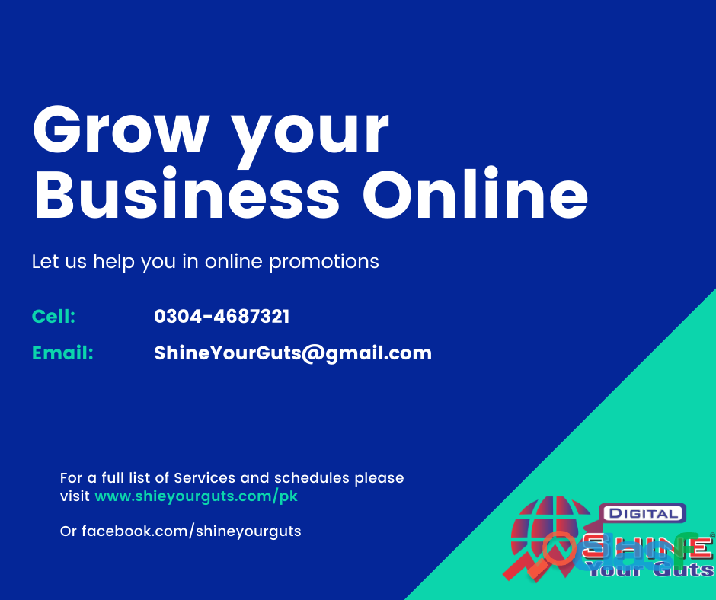 Seo services in lahore – shine your guts