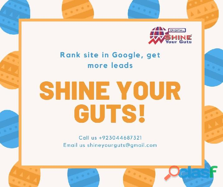 Seo services – get online visibility – shine your guts smc pvt