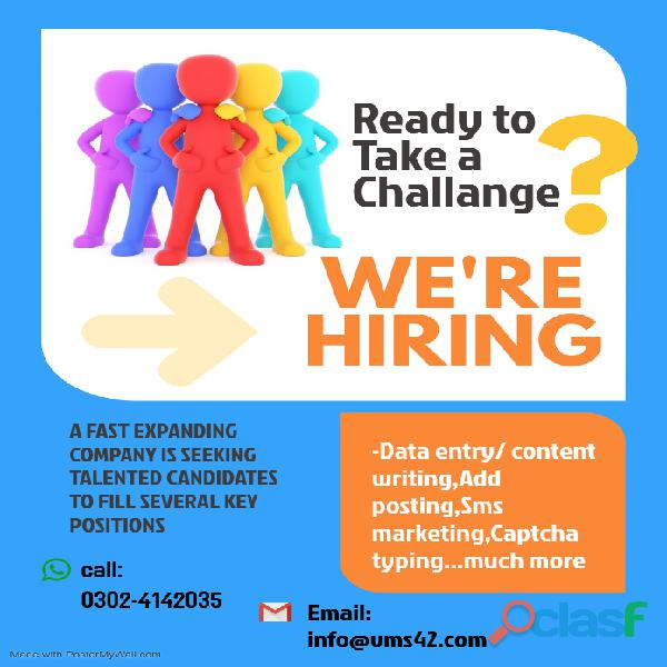 Online data typing job