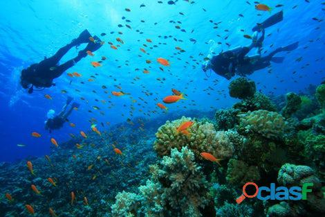 snorkeling and scubadiving at charna beach view 2