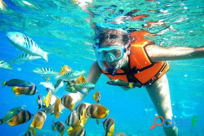snorkeling and scubadiving at charna beach view 3