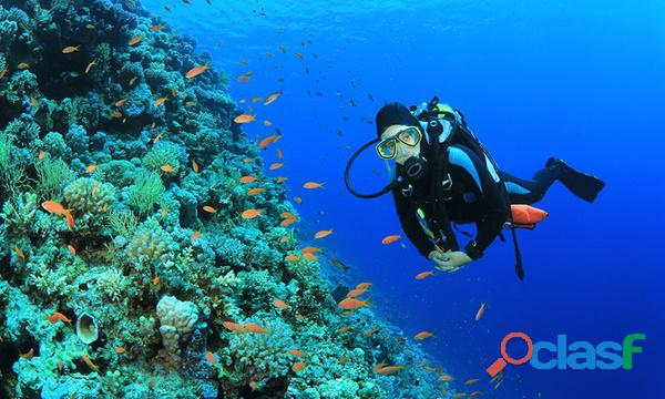 snorkeling and scubadiving at charna beach view 4