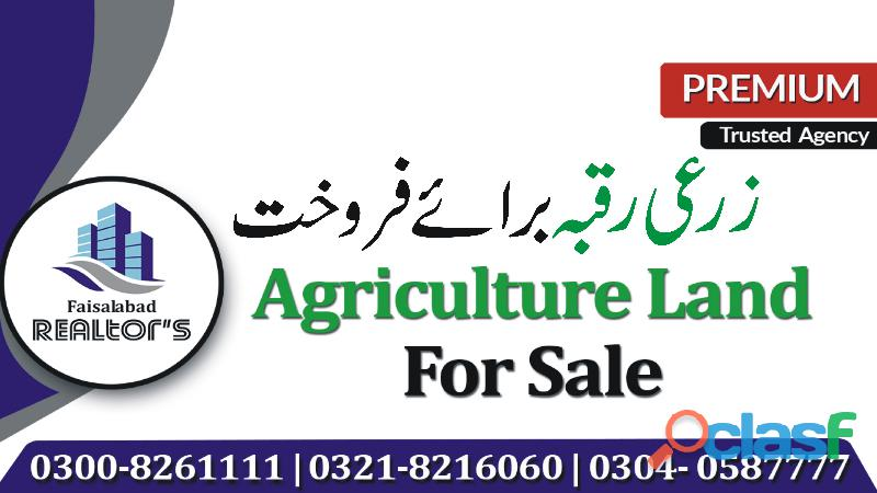 16 kanal agriculture land available for sale at khurrianwala to jarranwala road