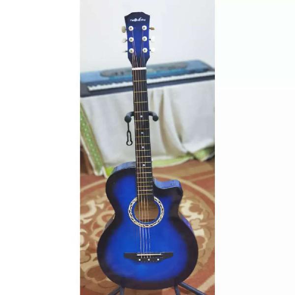 Guitars,, Gul and Gulzaar Guitars