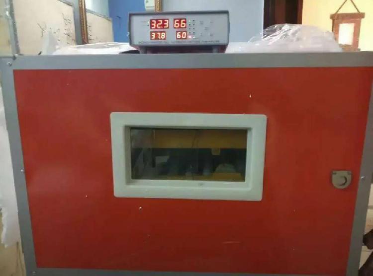All kind of automatic and semi automatic incubator available
