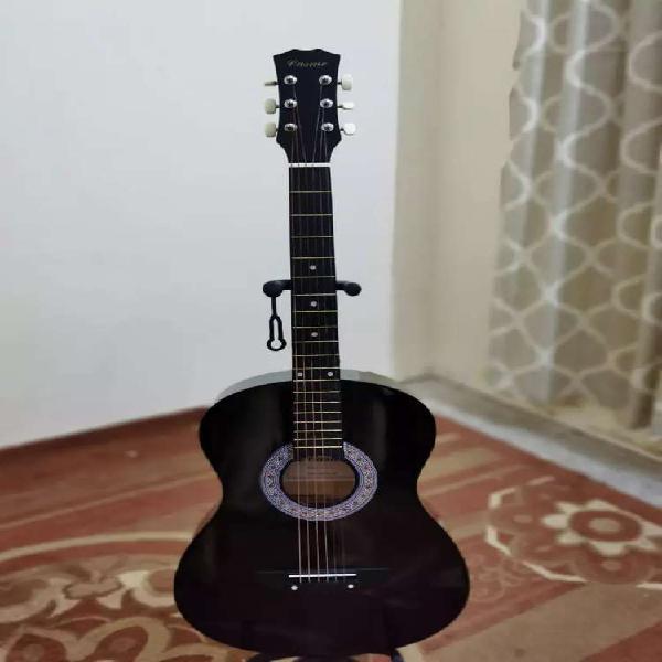 Gul And Gulzaar Guitars