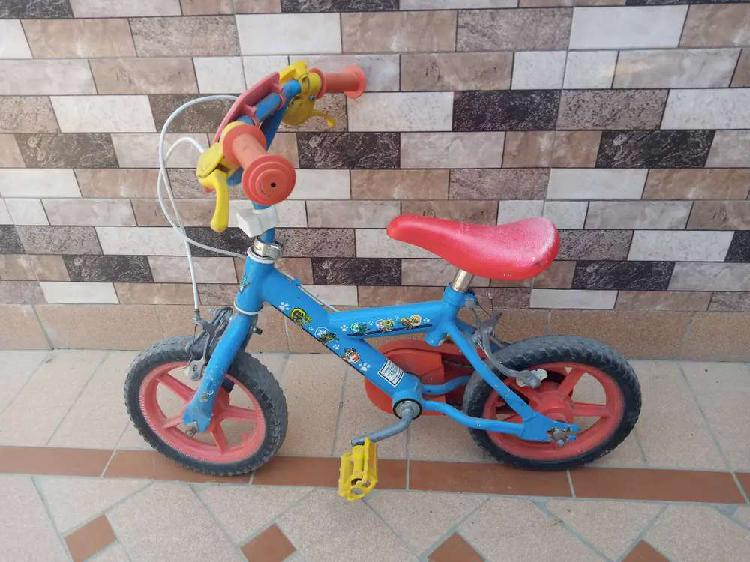 Kids. Bicycle available