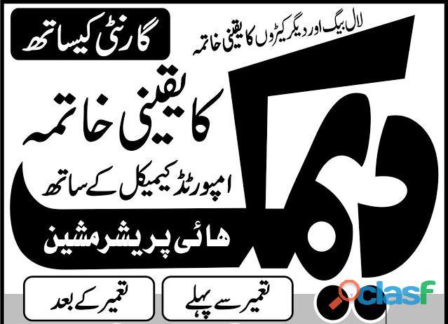 Deemak control services in lahore pakistan