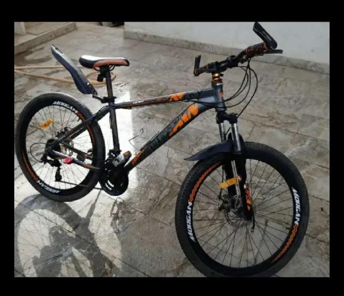 Cycle morgan