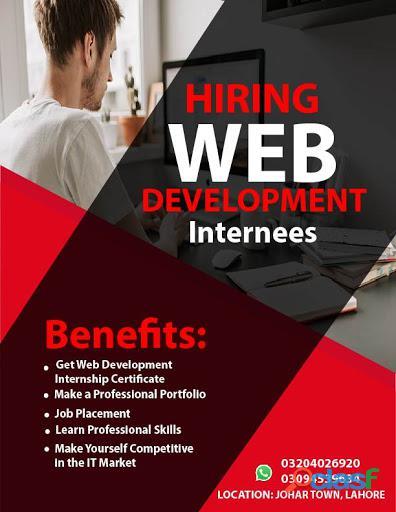 Hiring Web Developer Internee