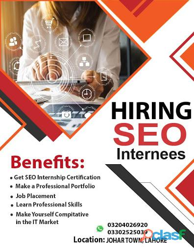 We are Hiring SEO internees.